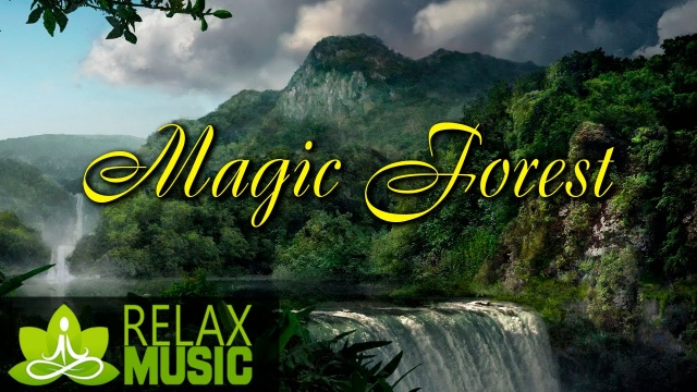 Relax Music. Relaxing Music with Nature Sounds | 4 Hours Music for Work