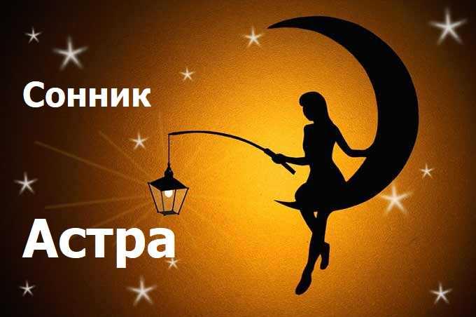 Сонник астра, видеть во сне астра к чему снится