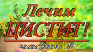 Лечение цистита народными средствами (часть 1)