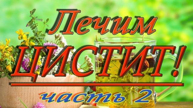 Лечение цистита народными средствами (часть2)